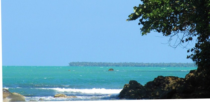 Punta Hicaco in distance - coconut plantations