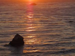 sunset of beach shore